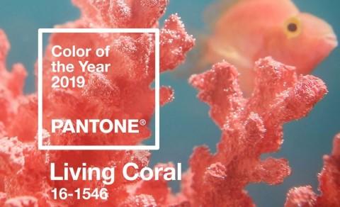 ''Living Coral'' Tren Warna 2019