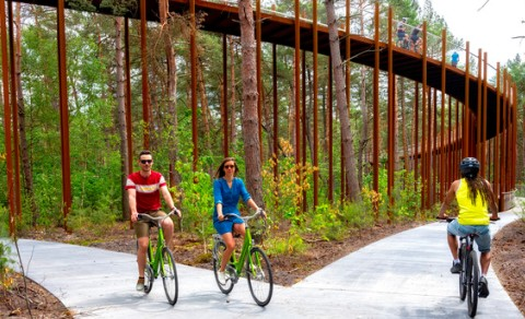 Cycling Through the Trees, Gowes Melintasi Hutan